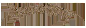 Brownsugr Digital Agency